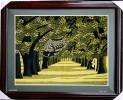 Tranh thêu phong cảnh Rừng cây